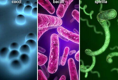 http://n3.datasn.io/data/api/v1/n3_chennan/skin_disease_6/by_table/skin_disease_image_1_access/af/95/35/7f/af95357f03d20827cc03c0ac5555a9c275f6a92e.jpg