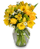 http://n3.datasn.io/data/api/v1/n3zm/flower_shop_in_the_united_states_and_canada_3/by_table/flower_shop_image_download_access/35/9f/8c/cd/359f8ccd6cd38af48e10d7a5be3b3d9f823222dd.jpg