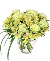 http://n3.datasn.io/data/api/v1/n3zm/flower_shop_in_the_united_states_and_canada_3/by_table/flower_shop_image_download_access/79/2d/cb/0b/792dcb0b8fcb4f5dc5f1f6b8e9152f63d77f828d.jpg