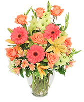 http://n3.datasn.io/data/api/v1/n3zm/flower_shop_in_the_united_states_and_canada_3/by_table/flower_shop_image_download_access/ac/64/fa/1f/ac64fa1ff4590678d83b89ffb93f13fe792c4a99.jpg