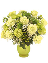 http://n3.datasn.io/data/api/v1/n3zm/flower_shop_in_the_united_states_and_canada_3/by_table/flower_shop_image_download_access/b3/03/01/92/b30301922c5f65efa77b42e49982c025c0d55d8c.jpg