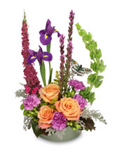 http://n3.datasn.io/data/api/v1/n3zm/flower_shop_in_the_united_states_and_canada_3/by_table/flower_shop_image_download_access/b9/ac/7f/32/b9ac7f3217b13a2570d22b045e0adbee38133cb7.jpg