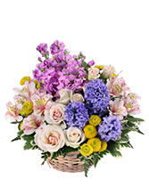 http://n3.datasn.io/data/api/v1/n3zm/flower_shop_in_the_united_states_and_canada_3/by_table/flower_shop_image_download_access/c6/fe/b1/9d/c6feb19d2c6fe0f3cdaea3966297ee7f2ca86c3d.jpg