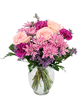 http://n3.datasn.io/data/api/v1/n3zm/flower_shop_in_the_united_states_and_canada_3/by_table/flower_shop_image_download_access/ca/bf/f6/82/cabff6824cfe826daea5ffc870c68bc677f6ee99.jpg