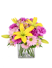 http://n3.datasn.io/data/api/v1/n3zm/flower_shop_in_the_united_states_and_canada_3/by_table/flower_shop_image_download_access/cb/cd/5e/90/cbcd5e90278dd869161746006d2275089b9e31ce.jpg