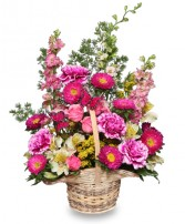 http://n3.datasn.io/data/api/v1/n3zm/flower_shop_in_the_united_states_and_canada_3/by_table/flower_shop_image_download_access/f5/8b/0d/45/f58b0d45e53850bd8877c54a91f8613b7db6243b.jpg