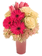 http://n3.datasn.io/data/api/v1/n3zm/flower_shop_in_the_united_states_and_canada_3/by_table/flower_shop_image_download_access/f5/e7/b4/0e/f5e7b40e60d2e23ab4686a66537ec31e11a09142.jpg