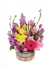 http://n3.datasn.io/data/api/v1/n3zm/flower_shop_in_the_united_states_and_canada_3/by_table/flower_shop_image_download_access/f9/d5/5f/b5/f9d55fb59858158cd89f07156ed23dcfdc3064f4.jpg